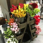 Open Until 6 Today! Get Ready for Spring with Us!
